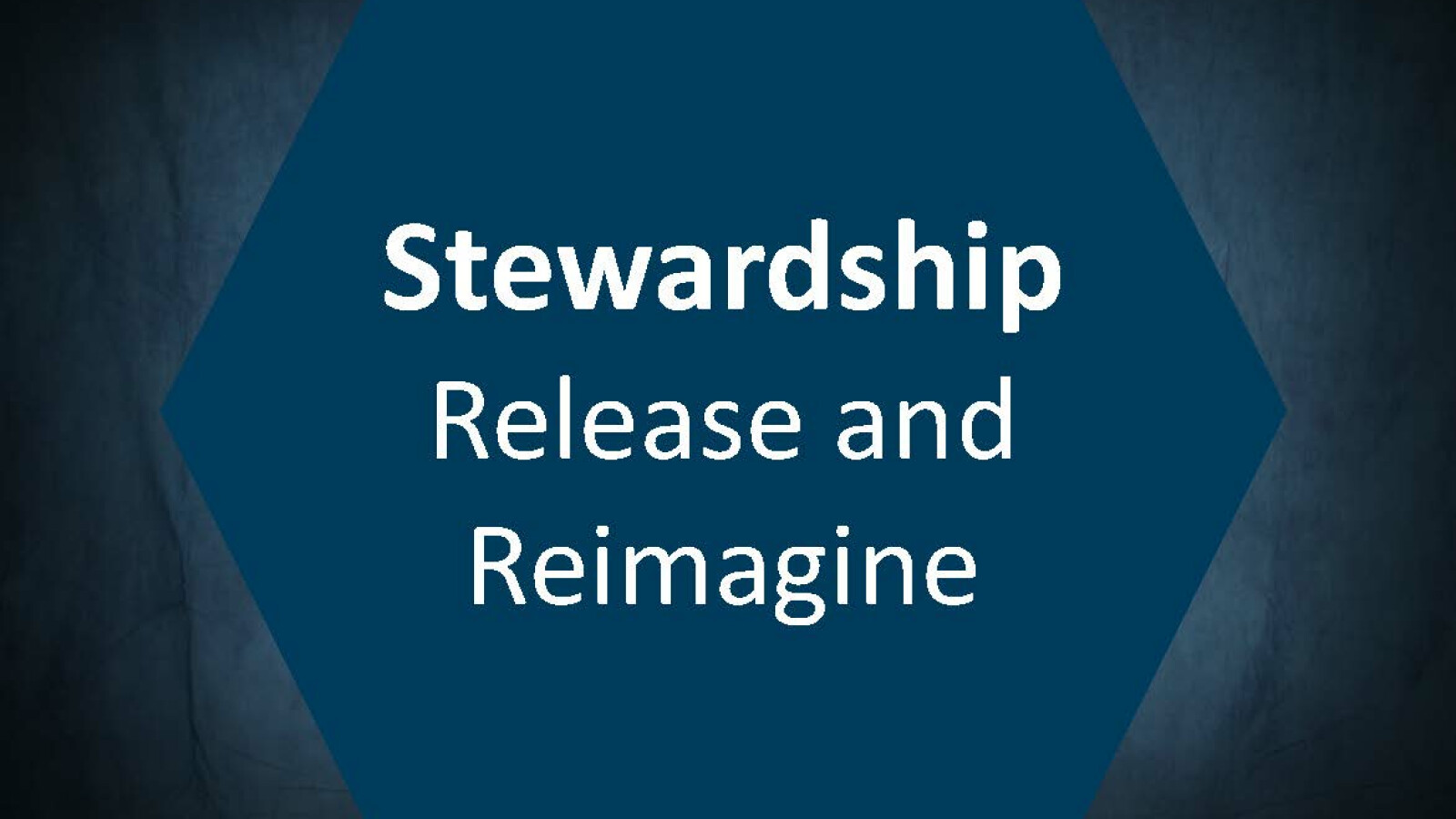 Stewardship - Release and Reimagine